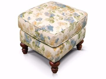 Picture of Eliza Ottoman